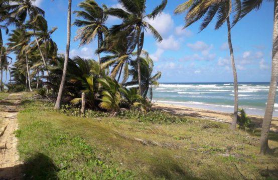 Duża działka inwestycyjna z dostępem do plaży – 110 m. linii brzegowej